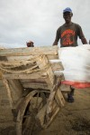 Yusuf, Ferry Worker - Moving Nile Perch